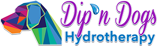 Hydrotherapy for Dogs in Orlando